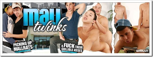MallTwinks.com - We Hit The Malls Hard In Hunt Of Gullible Straight & Gay Ass!